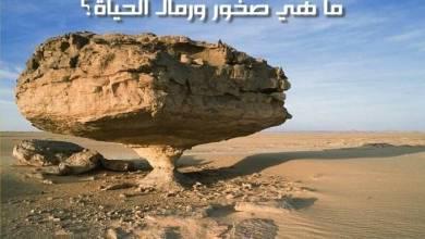 هل سألت نفسك يوماً ما هي الصخور الكبيرة في حياة الإنسان - قصة واقعية