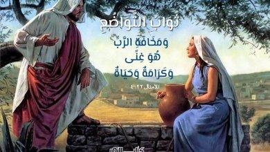 Photo of آيات حول الفخر والاعتزاز ( 2 ) L'orgueil – عربي فرنسي