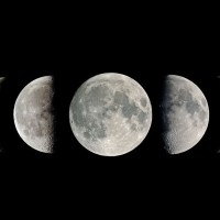 What Moon Phase were you Born Under?