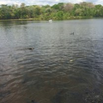 Venezuela-4-–-Parco-La-Llovizna