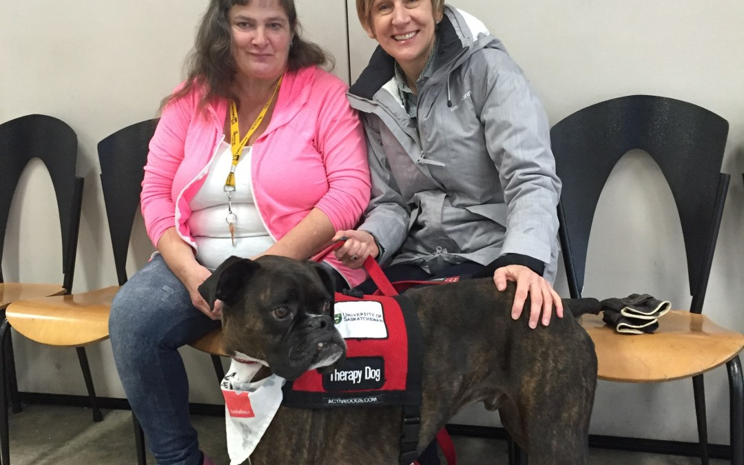 Therapy Dogs Visit the Lighthouse