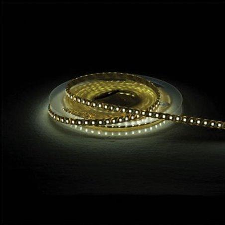 Showtec Flex-Strip Crystal ciepła biel-120 24V szpula 5m IP67