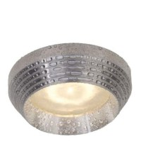 Polished Aluminum Downlight