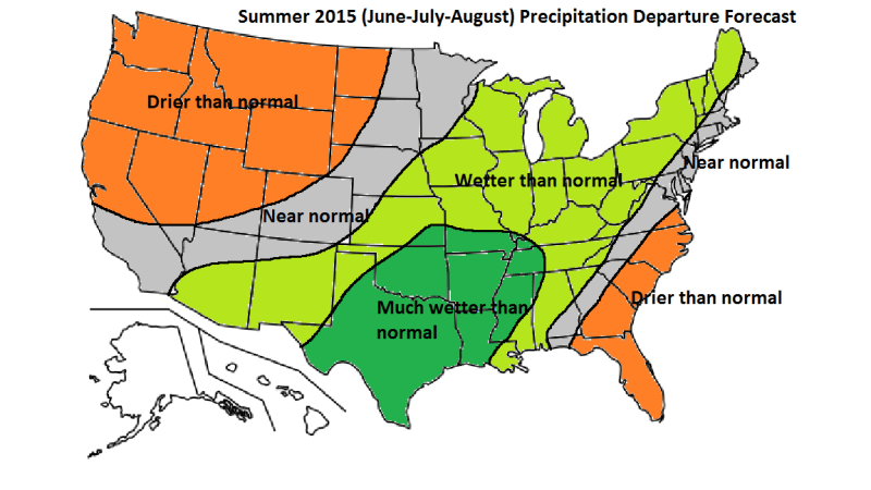 SUMMER-2015-FCST-PCPN.png