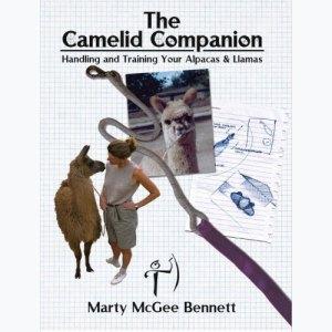 camelidcompanion