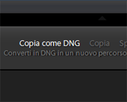 Come convertire i file RAW in DNG con Lightroom