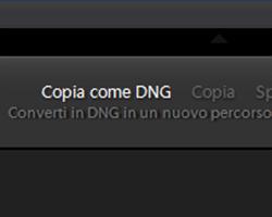 Come convertire i file RAW in DNG con Lightroom