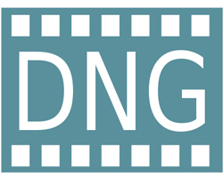 Usare il formato DNG è più conveniente con Lightroom 4 e Photoshop CS6