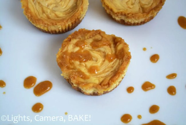 Mini Salted Caramel Cheesecakes. Little single serving cheesecakes. Super creamy, tangy and sweet with the lovely flavour of homemade salted caramel sauce! A sure winner. #saltedcaramelcheesecake #minicheesecakes #recipe