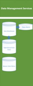 business intelligence data management