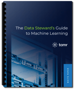 Data steward machine learning