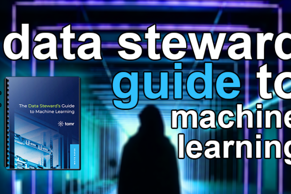 data steward's guide to machine learning