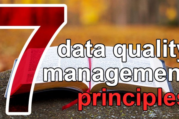 7 data quality management principles