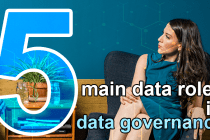 5 main data roles in data governance