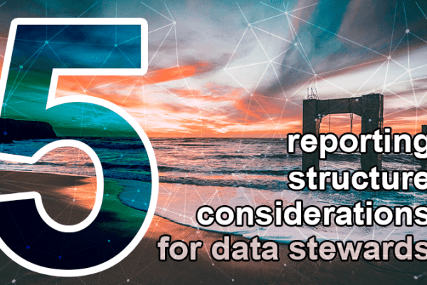 5 reporting structure considerations data steward