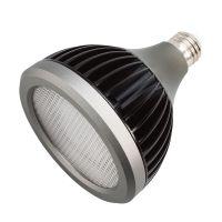 Kichler Landscape PAR38 17W LED 3000K 25Deg Bulb ...