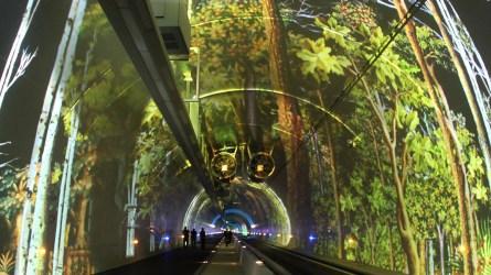 Tube modes doux, Lyon, France, Europe - Scénographie et images Skertzo - Photo Vincent Laganier