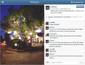 Chandelier Tree - Instagram