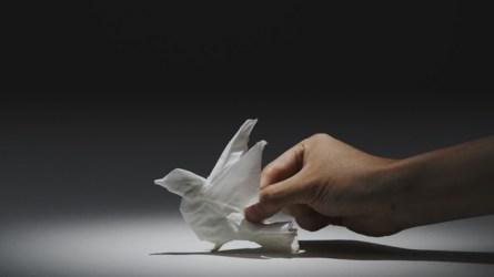 Tissue Animals, papier en lumière de Nepia