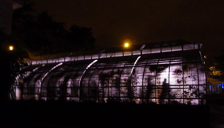 Jardin des Plantes, Nantes 2014-Serre--Photo-Jean-Baptiste-Wallers-Bulot