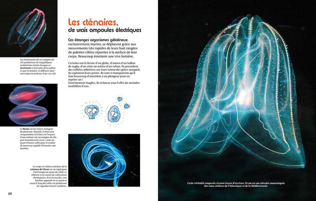 Extrait du livre, page 22-23 - Le monde lumineux des océans, de Catherine Vadon - Editions Belin