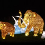 Illumination Jardin des Plantes, Paris, France © China Light Festival B.V
