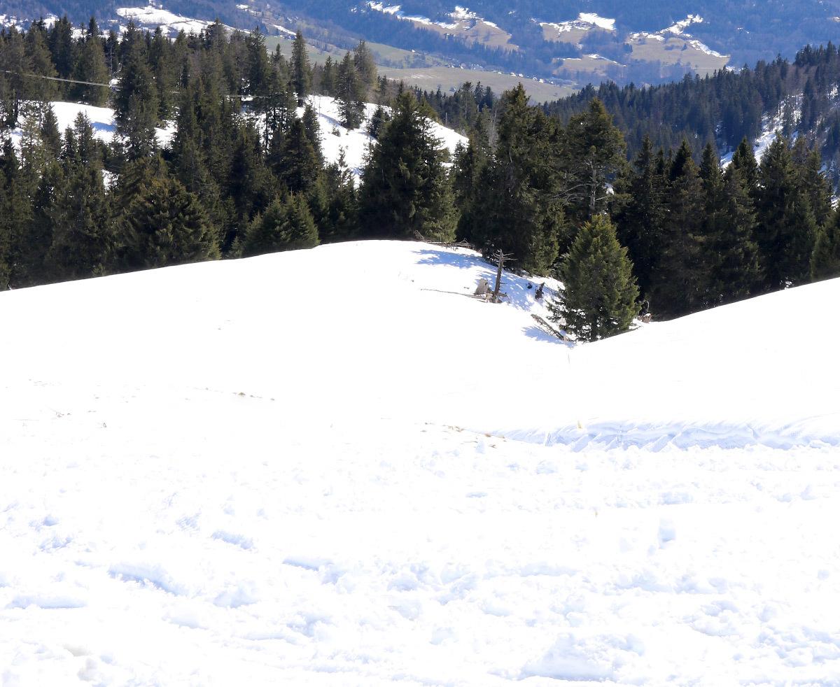 Éblouissement d'incapacité d'une surface de neige au Soleil
