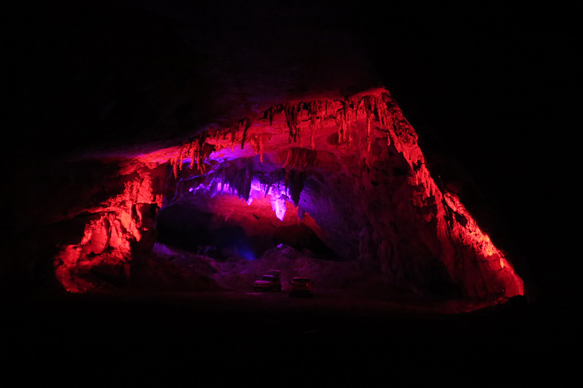 In Situ 2020, grotte de Bedeilhac, Ariège