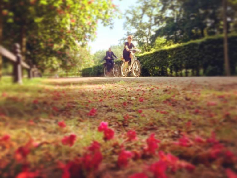 #paracegover Descrição para deficientes visuais: a imagem mostra duas pessoas passeando de bicicleta em um parque. O chão está coberto de florzinhas vermelhas caídas de uma árvore próxima. O dia está lindo ❤️ — at Beethoven-Haydn-Mozart-Denkmal.