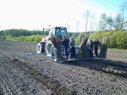 Weidenpflanzung StepPlanter