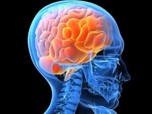 Morbo di Alzheimer scoperto da un italiano