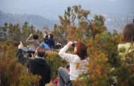 Parco del Beigua, domenica 13 marzo birdwatching e ciaspolata