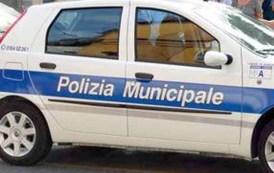 Genova, il reparto annona della Polizia a rischio chiusura. L'allarme della Cisl