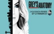 Grey's Anatomy, la quattordicesima stagione parla italiano