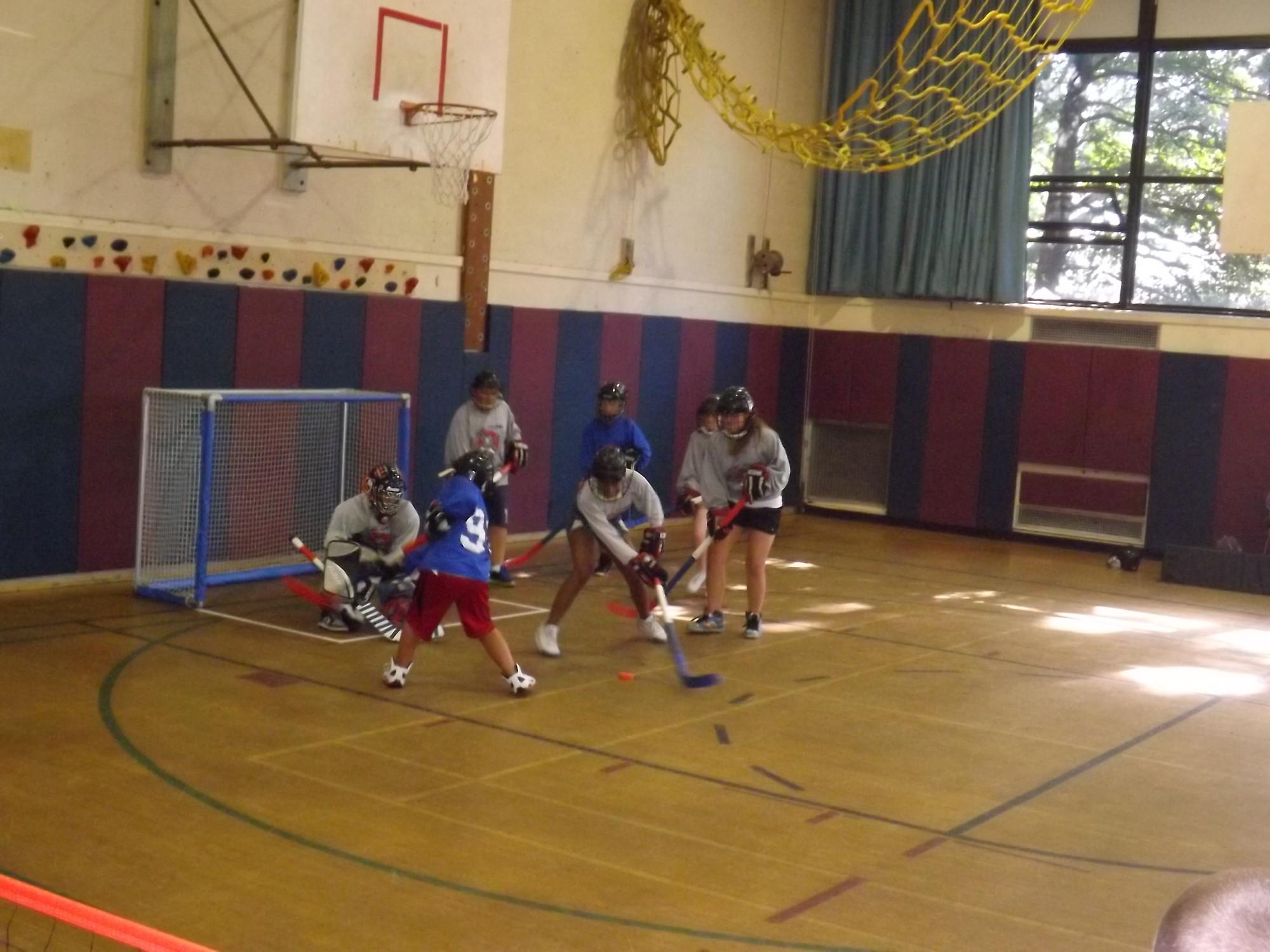 Summer Hockey League Nets Big Turnout