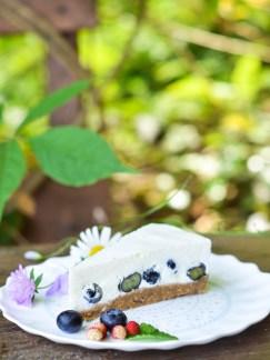 torta od jogurta s borovnicama (13)