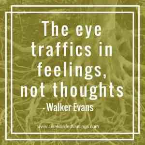 the-eye-traffics-in-feelings-like-minded-musings