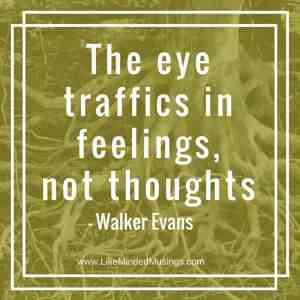 the-eye-traffics-in-feelings-like-minded-musings