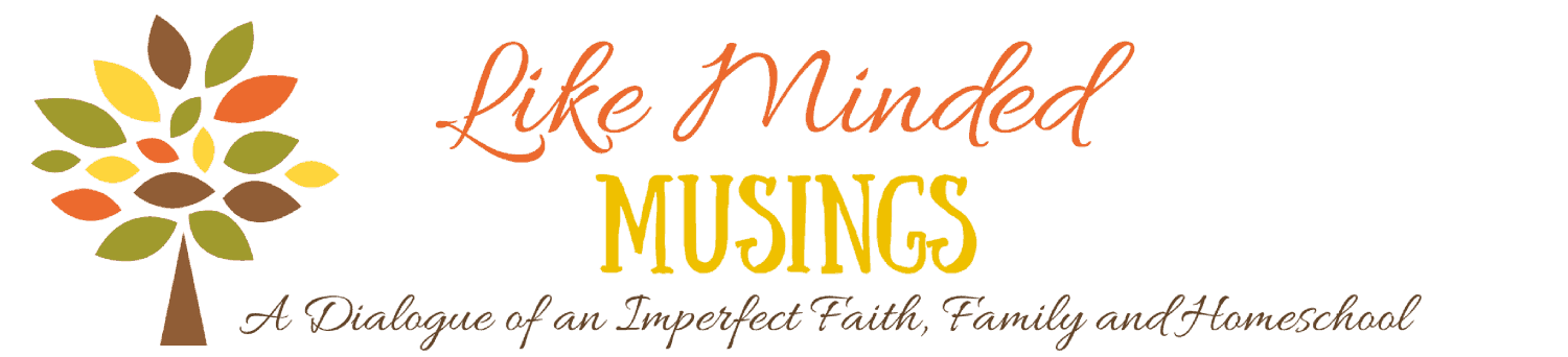 like-minded-musings-blog