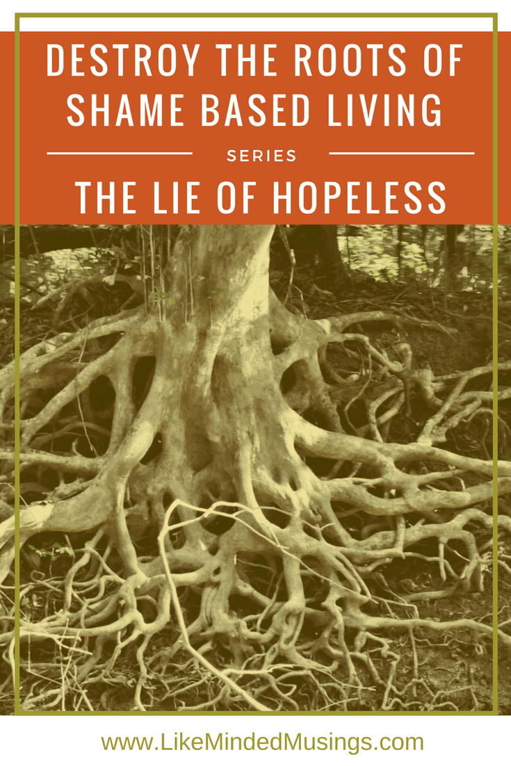Destroy the Roots of Shame Based Living: The Lie - I am Hopeless