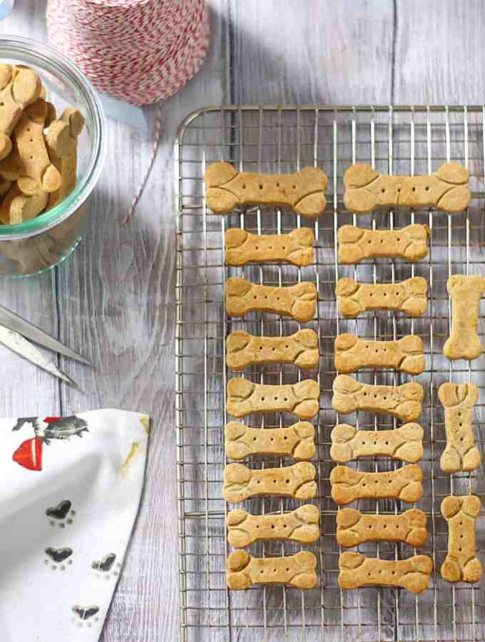 GF Dog Biscuits 1