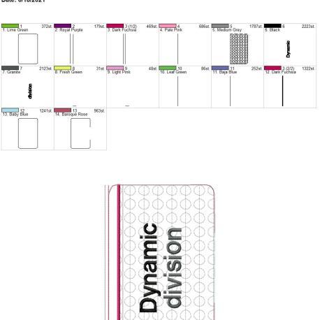 Dynamic Dvision zipper bag 6×10