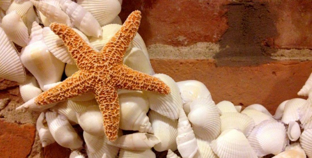 sea shell wreath