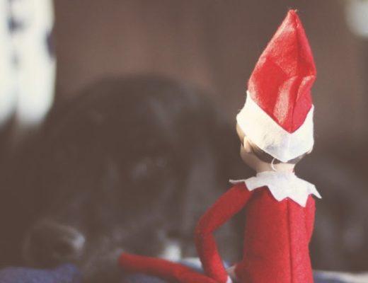 Elf on the Shelf: Harvey Meets Hayden