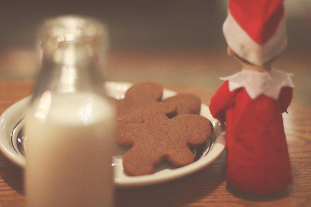 Elf on the Shelf: Waiting for Santa
