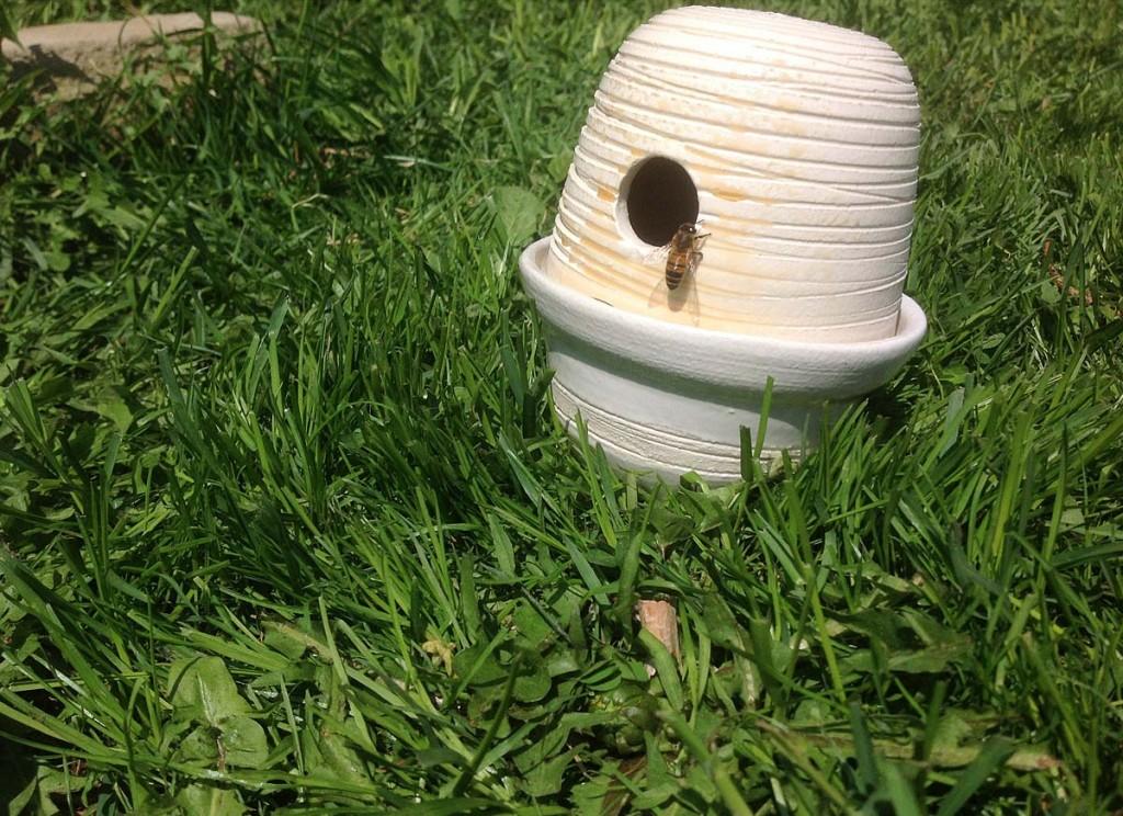 bee feeder
