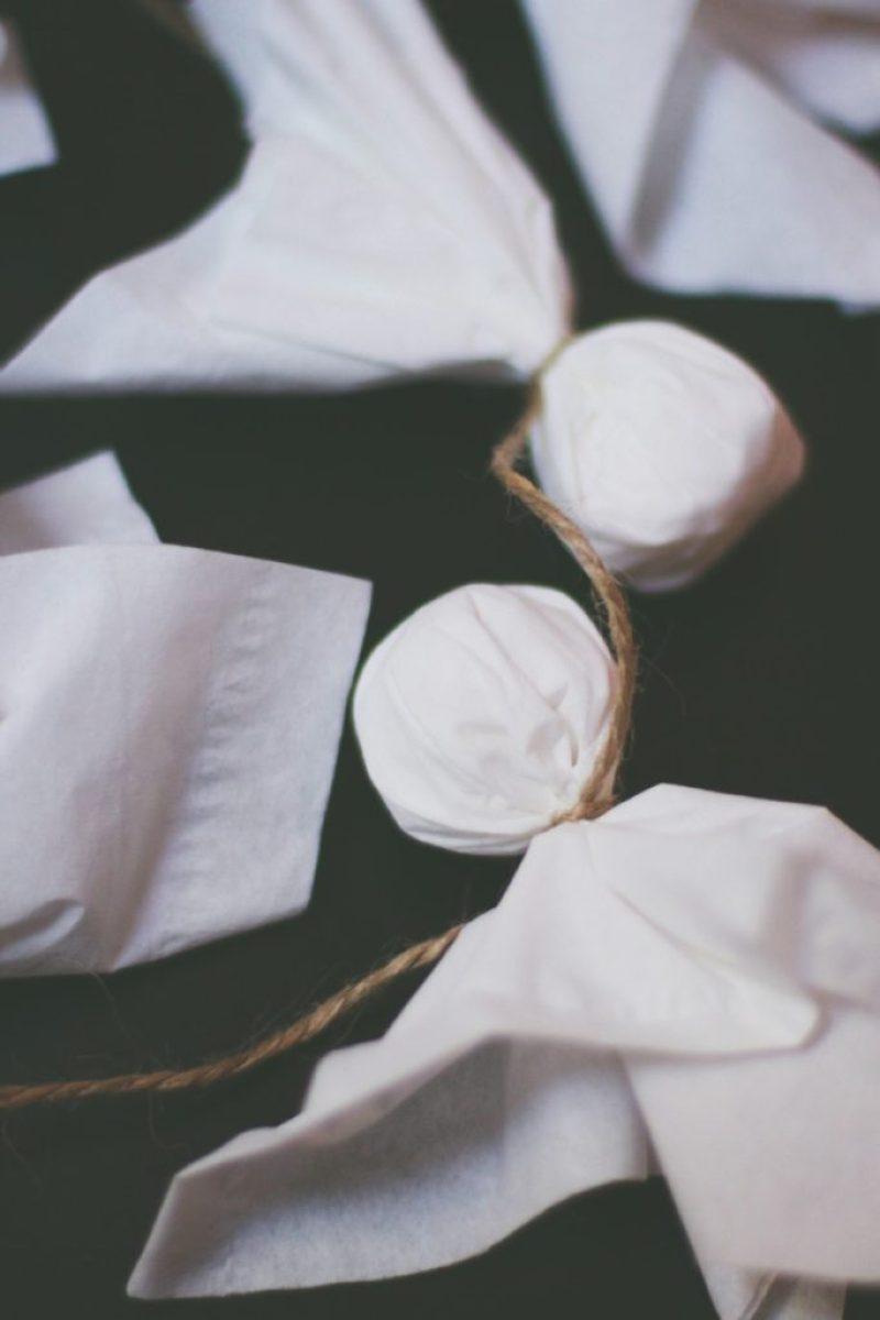 Tissue Ghost