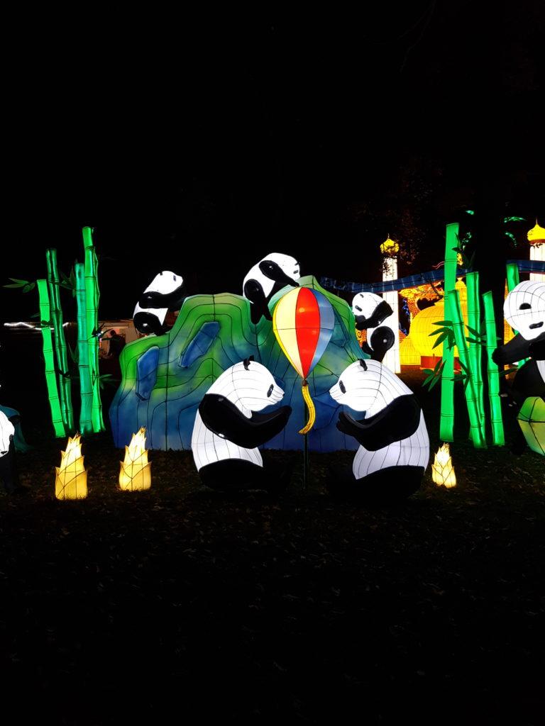 Festival des lanternes, Gaillac