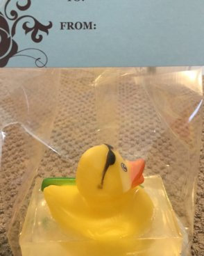 Duck with Surfboard
