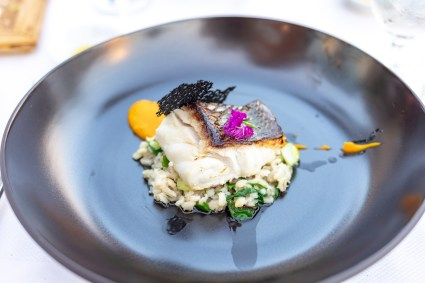 Adriatic fish filet, barley of mangel and fennel, carrot with purreé